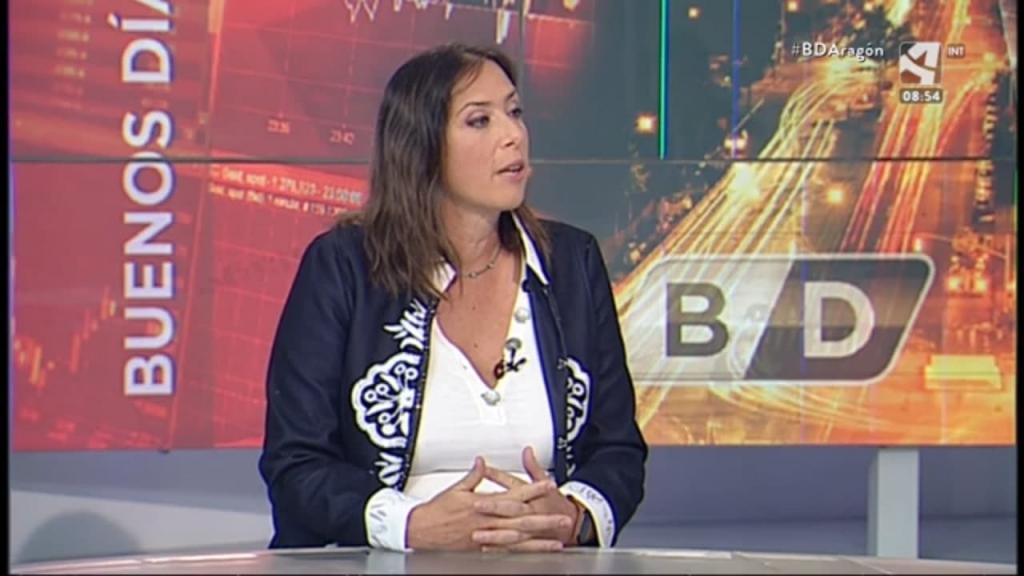 Alicia Valero, profesora de la Universidad de Zaragoza e investigadora del Instituto CIRCE